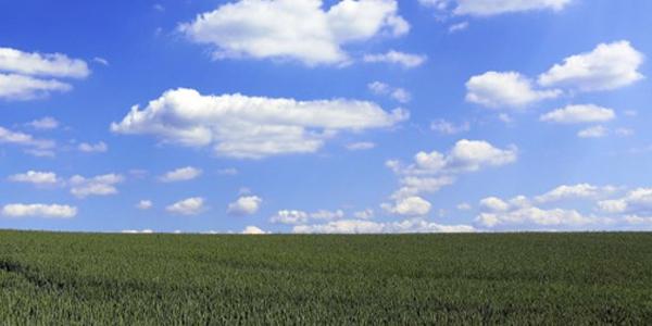 Nachhaltigkeit und Umweltschutz